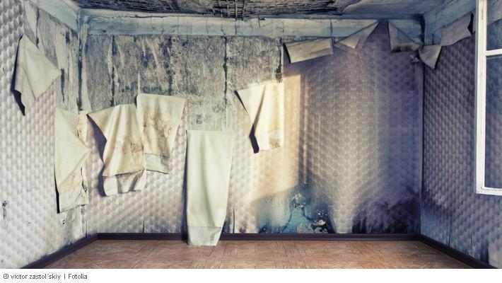 in der neuen mietwohnung gab es von anfang an m ngel sch den. Black Bedroom Furniture Sets. Home Design Ideas