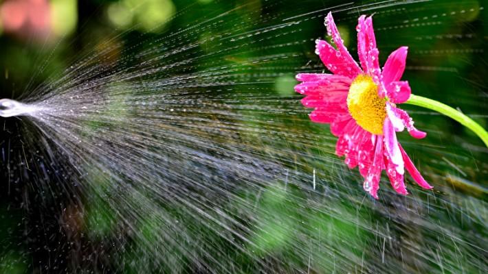 Berühmt Betriebskosten Gartenpflege - Kosten für Gießen, Bewässerung sparen @YT_77