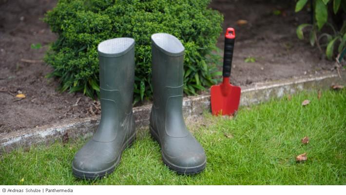 Garten Vermietet Gartenpflege Und Nutzung Durch Mieter